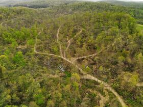 Stoney Hill Road Online Only Land Auction featured photo 5