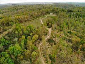 Stoney Hill Road Online Only Land Auction featured photo 6