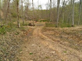 Stoney Hill Road Online Only Land Auction featured photo 12