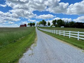 Kidron Area Iconic Farmstead & Building Lots featured photo 5