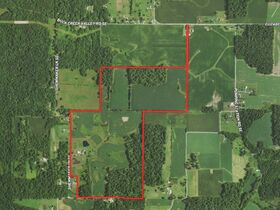 217+ Acre Harrison County Real Estate Online Only Auction featured photo 1