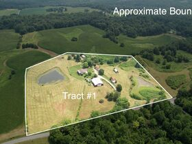 213+ Acre Harrison County Real Estate Online Only Auction featured photo 4
