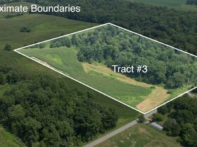 213+ Acre Harrison County Real Estate Online Only Auction featured photo 6