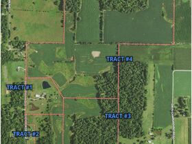 213+ Acre Harrison County Real Estate Online Only Auction featured photo 3