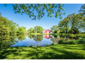 16 +/- ACRE PARADISE SELLING IN 4 TRACTS; CHARMING COTTAGE WITH GLASS SUNPORCH, POND AND BARN featured photo 4