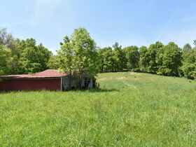 23 Acre Taylor County Land featured photo 1