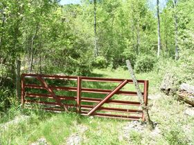 23 Acre Taylor County Land featured photo 2
