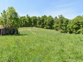 23 Acre Taylor County Land featured photo 5