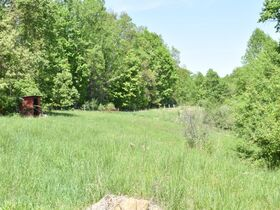 23 Acre Taylor County Land featured photo 10