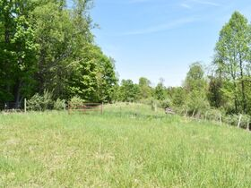 23 Acre Taylor County Land featured photo 12