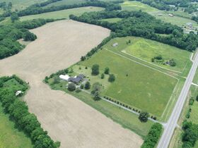 Beautiful 50+/- Acre - Farm in Bethpage with House, Shop and Outbuildings - Offered in Tracts - AUCTION Oct. 16th featured photo 4