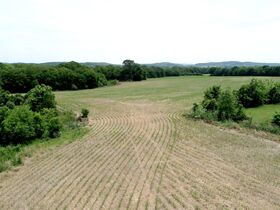 Beautiful 50+/- Acre - Farm in Bethpage with House, Shop and Outbuildings - Offered in Tracts - AUCTION Oct. 16th featured photo 7