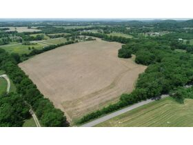 AUCTION COMING SOON: Beautiful 54+/- Acres Farm in Bethpage, TN - Selling in 10 Tracts featured photo 4