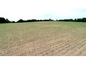AUCTION COMING SOON: Beautiful 54+/- Acres Farm in Bethpage, TN - Selling in 10 Tracts featured photo 5