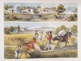Schnakenberg Chromolithograph Print Collection II featured photo 3