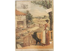 Schnakenberg Chromolithograph Print Collection II featured photo 11