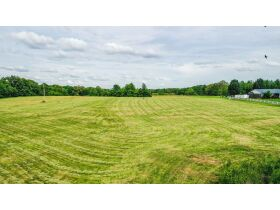 23 +/- ACRES SELLING IN 4 TRACTS; MINI FARM; POTENTIAL BUILDING SITES featured photo 3