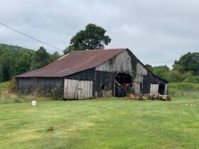 Larry D Roy Estate of House & 106+- Acres in Tracts at Absolute Live Auction featured photo 9