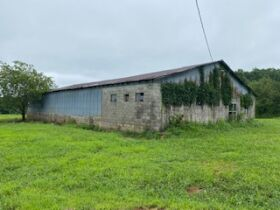 Larry D Roy Estate of House & 106+- Acres in Tracts at Absolute Live Auction featured photo 7