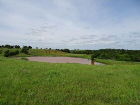 215+/- acres in Noble County Oklahoma - Perry/Orlando Area featured photo 4