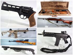 Feel Safe And Secure Firearm And Sportsman Auction featured photo 2