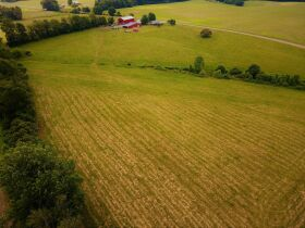 House, Garage, Barn and 46+/- Acres; Farm Equipment & Personal Property at Absolute Multi-Par Auction featured photo 7