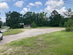 Sumter County, Alabama Bankruptcy Real Estate Auction featured photo 6