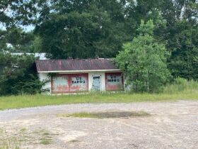 Sumter County, Alabama Bankruptcy Real Estate Auction featured photo 8