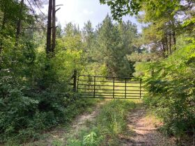 Sumter County, Alabama Bankruptcy Real Estate Auction featured photo 9