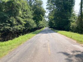 Sumter County, Alabama Bankruptcy Real Estate Auction featured photo 10