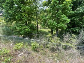 Vacant Lot In Asheville (Zoned CBII) & Vacant Lot in Watauga County, NC featured photo 6