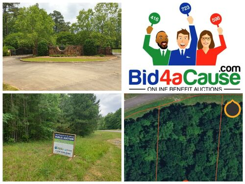 B4aC - ABSOLUTE AUCTION - Smith Lake Lot in Stoney Point Landing - Double Springs, Winston County, AL featured photo