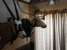 Ultimate Man Cave Decor And More Estate featured photo 3