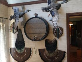 Ultimate Man Cave Decor And More Estate featured photo 12