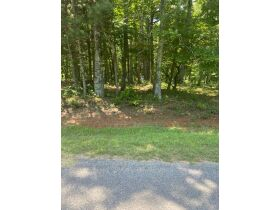 Multiple Bluff Lots in Jackson County & 1 Residential Lot in Creeks Edge Estates featured photo 2