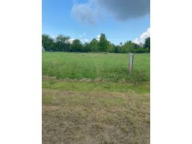Multiple Bluff Lots in Jackson County & 1 Residential Lot in Creeks Edge Estates featured photo 3