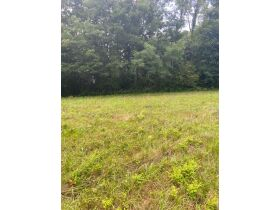 Multiple Bluff Lots in Jackson County & 1 Residential Lot in Creeks Edge Estates featured photo 4