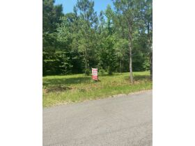 Multiple Bluff Lots in Jackson County & 1 Residential Lot in Creeks Edge Estates featured photo 5