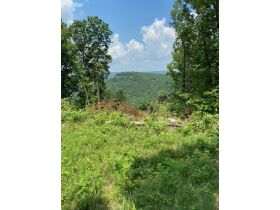 Multiple Bluff Lots in Jackson County & 1 Residential Lot in Creeks Edge Estates featured photo 6