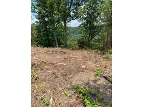 Multiple Bluff Lots in Jackson County & 1 Residential Lot in Creeks Edge Estates featured photo 10