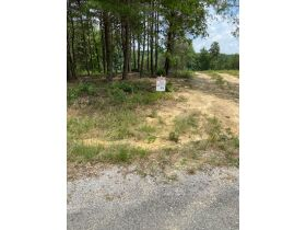 Multiple Bluff Lots in Jackson County & 1 Residential Lot in Creeks Edge Estates featured photo 12