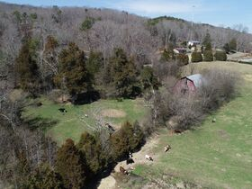 Prime 43+/- Acres Ready to Be Developed! Utilities Available - Located Between Chattanooga and Knoxville - Real Estate Listing featured photo 12