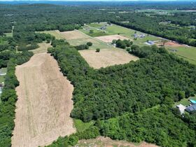 3 BR, 2.5 BA Home on 45+/- ACRES Offered in 3 Tracts 5+/- AC to 25+/- AC Each with Barn, Shop, Open Pasture, Hardwoods - AUCTION in Lascassas, TN featured photo 6
