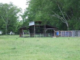 3 BR, 2.5 BA Home on 45+/- ACRES Offered in 3 Tracts 5+/- AC to 25+/- AC Each with Barn, Shop, Open Pasture, Hardwoods - AUCTION in Lascassas, TN featured photo 7