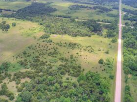 PAYNE COUNTY LAND AUCTION 20+/- ACRES - COYLE RD featured photo 4
