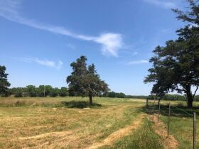 HIGHLY PRODUCTIVE GRASS FARM-SOUTH COFFEYVILLE AREA-NOWATA COUNTY, OK LAND AUCTION - 220+/- acres SOLD AS 1 UNIT featured photo 10