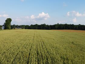 Tremendous Offering of 33 Acres In Wayne County featured photo 5