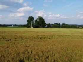 Tremendous Offering of 33 Acres In Wayne County featured photo 6