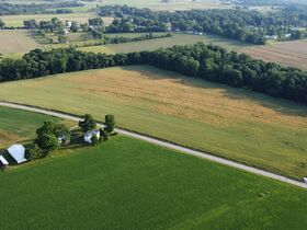 Tremendous Offering of 33 Acres In Wayne County featured photo 9