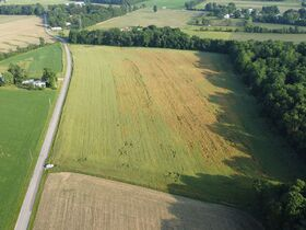Tremendous Offering of 33 Acres In Wayne County featured photo 11